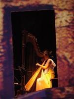 nghệ sĩ Mai Ý Nhi, người duy nhất trong cả nước hiện nay, tốt nghiệp đại học môn biểu diễn hạc cầm. - Ảnh: T.T.D.