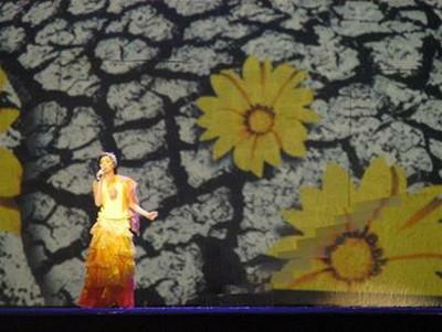 Những bông hoa vàng nở ra từ khe nút trên phông nền sân khấu - Ảnh: T.T.D.